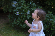 Baby girl watching flying soap bubbles in the garden - LBF02061