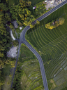 Indonesia, Bali, Aerial view of rice fields - KNTF01518