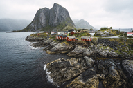 Norway, Lofoten, remote houses at rocky coast - KKAF01865