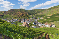 Germany, Rhineland-Palatinate, Ahr Valley, Red Wine Hiking Trail, Mayschoss - FRF00729