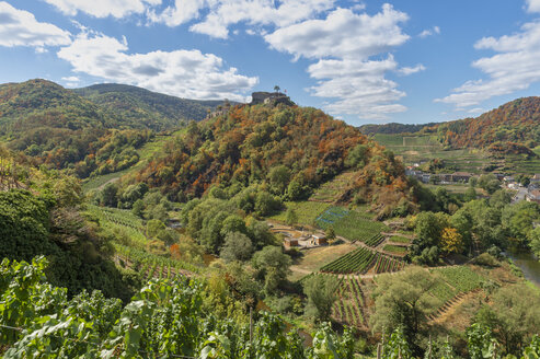 Germany, Rhineland-Palatinate, Ahr Valley, Mayschoss, Saffenburg - FRF00732