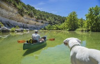 Dog watching man in canoe on river - AURF05050