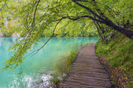 Plitvice National Park, Croatia - AURF05389