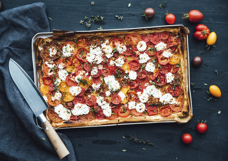 Tomato tart with goat cheese and thyme on mustard - IPF00481