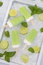 Lime mint popsicles, slices of limes and mint leaves on crushed ice - JUNF01254