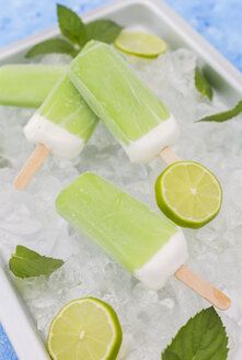 Lime mint popsicles, slices of limes and mint leaves on crushed ice - JUNF01257