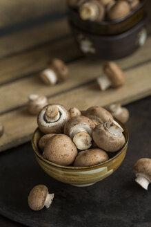Bowl of Crimini Mushrooms - JUNF01266