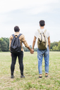 Back view of young gay couple with backpacks standing hand in hand on a meadow - FBAF00059