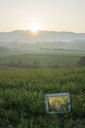Italy, Tuscany, Borgo San Lorenzo, sunrise above rural landscape with window frame in field - FBAF00089