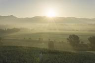 Italy, Tuscany, Borgo San Lorenzo, sunrise above rural landscape - FBAF00095