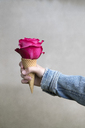 Girl's hand holding ice cream cone with pink rose blossom - PSTF00225