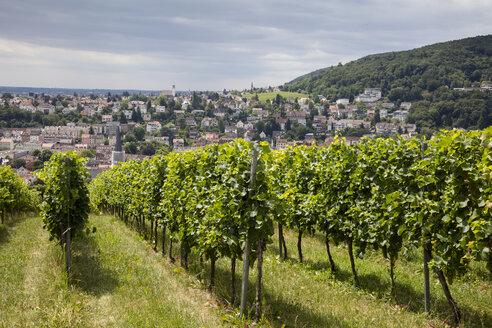 Germany, Rhineland-Palatinate, Neustadt an der Weinstrasse, townscape, vineyard - WIF03620