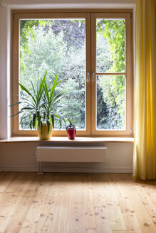 Potted plants at window sill - CMF00850