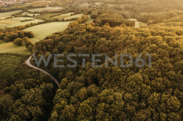 Austria, Lower Austria, Vienna Woods, Biosphere Reserve Vienna Woods, Aerial view of forest in the early morning - HMEF00003