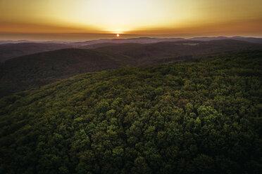 Austria, Lower Austria, Vienna Woods, Biosphere Reserve Vienna Woods, Aerial view of forest at sunrise - HMEF00006
