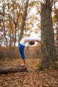 Fall Foliage Yoga - AURF06204