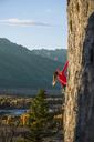 Female climber climbing in Teton Range during autumn, Wyoming, USA - AURF06255