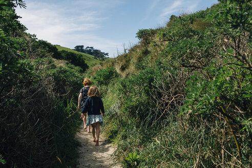 Rear view of siblings walking amidst plants - CAVF48807