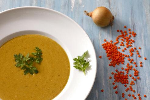 Dish of red lentil soup - JTF01085