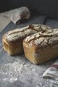 Home-baked rustic rye bread - ODF01592