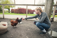 Teenage girl reaching out to chicken at farm, Chilliwack, British Columbia, Canada - AURF07315
