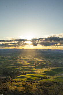 Scenery with rolling hills at sunrise, Steptoe Butte State Park, Palouse, Washington State, USA - AURF07557