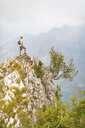 Italy, Massa, man standing on top of a peak in the Alpi Apuane mountains - WPEF00855
