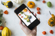 Autumnal decoration, ornamental pumpkins, woman taking photo with smartphone - JUNF01330