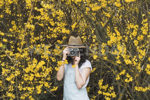 Young woman photographing with vintage camera while standing amidst yellow blossoms on branches at park - CAVF49016 - Cavan Images/Westend61
