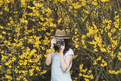 Young woman photographing with vintage camera while standing amidst yellow blossoms on branches at park - CAVF49016