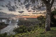 Iguazu Falls landscape at dusk, Parana, Brazil - AURF07675