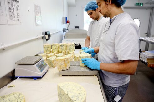 Cheese makers cutting blocks of blue stilton to package and send off to wholesalers - CUF44073