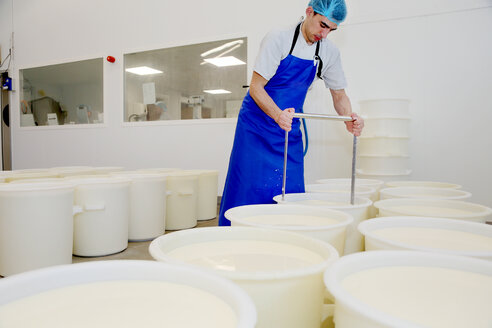 Cheese maker cutting the curds by hand - CUF44079
