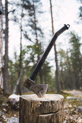 Axe on tree stump - KKAF02395