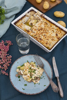 Casserole of potato mincemeat gratin with sheep cheese - JUNF01363