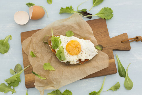 Fried egg on slice of brown bread coated with paprika cream - JUNF01366