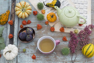 Autumnal table decoration with decorative gourds, Chinese lanterns - JUNF01369