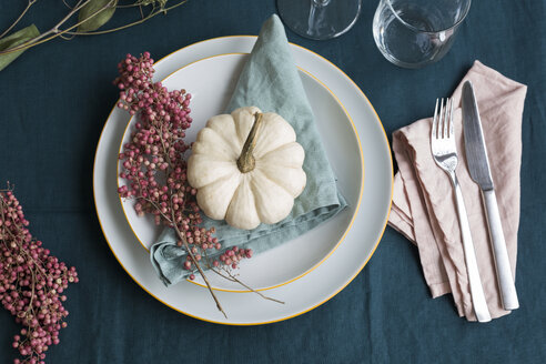 Autumnal table decoration with white decorative gourd and pink peppercorns - JUNF01381