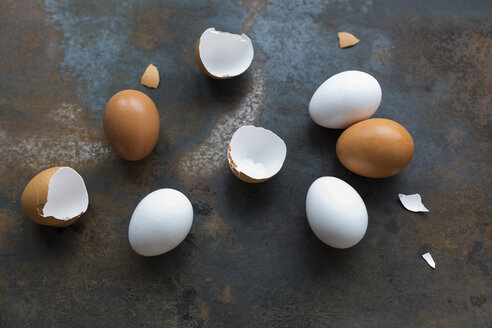 White and brown eggs and eggshells on rusty metal - JUNF01403