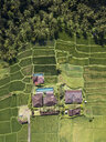 Indonesia, Bali, Ubud, Aerial view of rice fields - KNTF02003