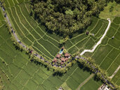 Indonesia, Bali, Ubud, Aerial view of rice fields - KNTF02006