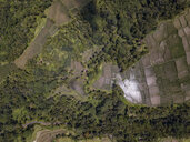 Indonesia, Bali, Ubud, Aerial view of rice fields - KNTF02027