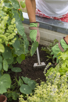 Close-up of woman gardening at raised bed - JUNF01466