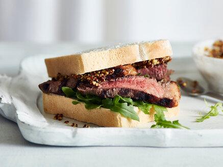 Steak sandwich with mustard on tray - CUF44796
