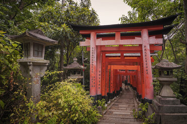 Japan, Kyoto, Fushimi Inari-Taisha temple, Torii Gate, Tourist with backpack - EP00490