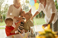 Happy extended family on a garden birthday party - ZEDF01666