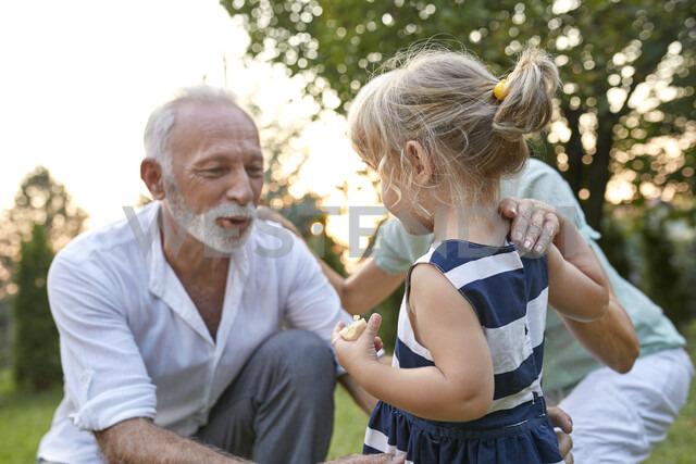 Grandparents with granddaughter in garden - ZEDF01687
