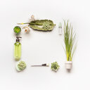 High angle view of green products on a table on a white background - INGF00414