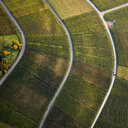 View from above textured green farmland crops - FSIF03217