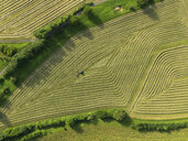 Aerial view tractor in patterned green agricultural crop, Hohenheim, Baden-Wuerttemberg, Germany - FSIF03253